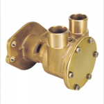 25-19522 PUMP RAW WATER With Flange